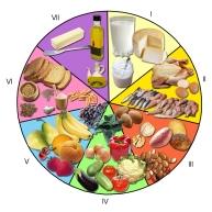 Rueda_de_los_alimentos