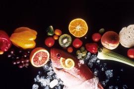 tec_alimentos